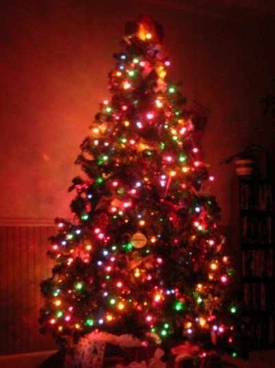 Jews Christmas Trees.Speaker Of Israeli Parliament Bans Xmas Trees What Does Xmas