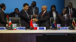 WHAT CAN AFRICANS LEARN FROM ANTS AND CHINA?